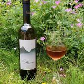 Kisi Biomarani 2016Kisi – est un cépage rare qui s'est imposé sur la scène viticole géorgienne. Notre Kisi a une couleur ambrée éclatante (orange), avec des arômes croquants de thé, de fruits secs et de subtiles notes d'herbes. Les caractéristiques uniques du vin comprennent des tannins secs, rafraîchissants et astringents, qui ajoutent à une finale d'arômes de longue durée. Le vin se marie bien avec des plats de volaille et végétariens, ainsi qu'avec des variétés de fromages fins. Notre récolte 2016 est certifiée en conversion de vin biologique par Caucascert. Il est purifié par des processus naturels et peut contenir des sédiments qui ne nuisent pas à sa qualité.
