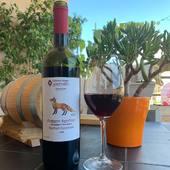 RATCHULI DZELSHAVI 2018Kanaphéouli est un terroir dans le village de Sadméli, Ambrolauri, la région montagneuse de Racha, où poussent des vignobles de cépage Rachuli Dzelshavi. Ce vin légère et vif estd'une couleur rubis éclatante. Lors de la dégustation des notesde fruits rouges et d'herbes prédominent.